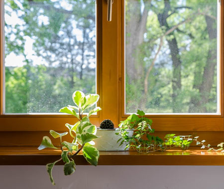 Types of Windows to Inspire Your Remodel